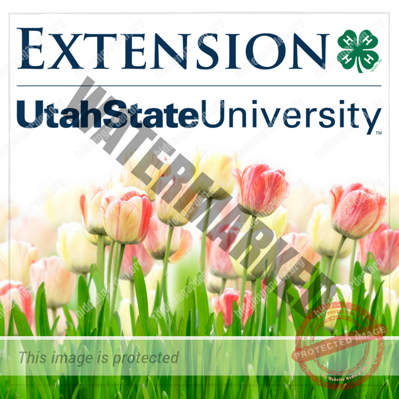 USU Extension Photo