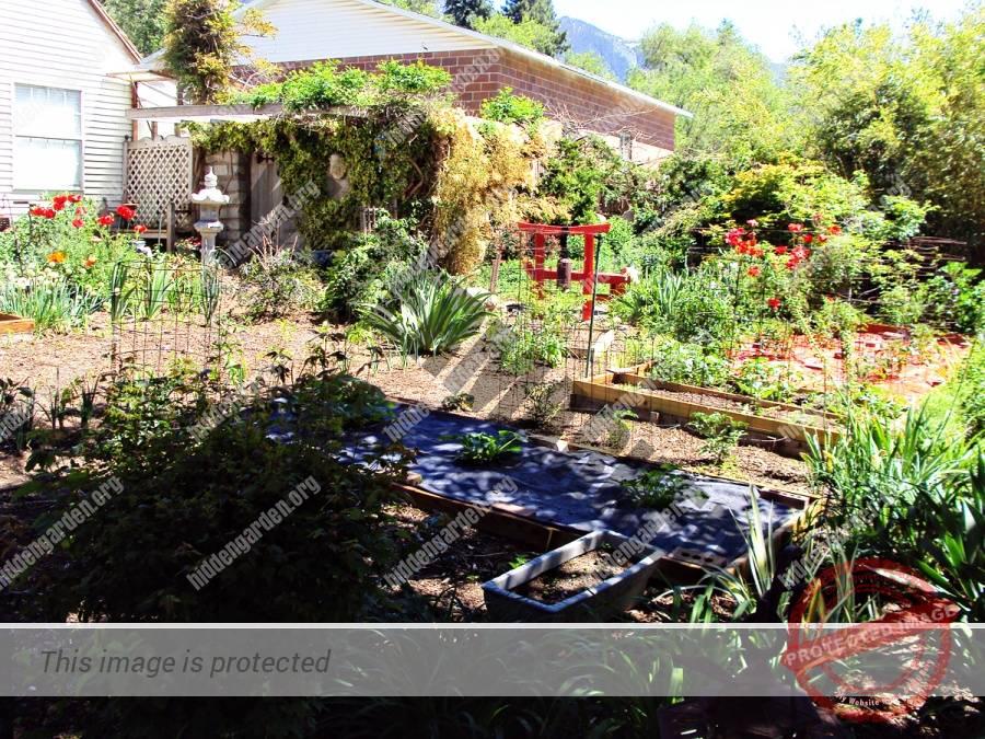 Spens Garden