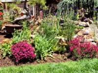 Griggs Garden